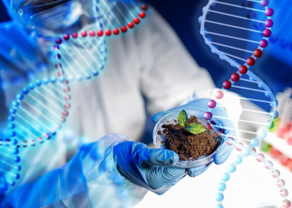 Ciências Biológicas: bacharelado ou licenciatura